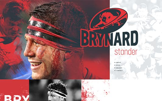 Brynard Web Design