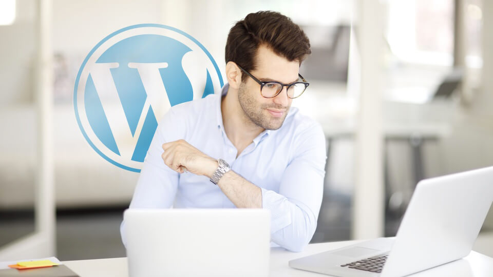 Wordpress Hosting Hero